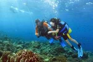 バリ島の海にダイビングツアー