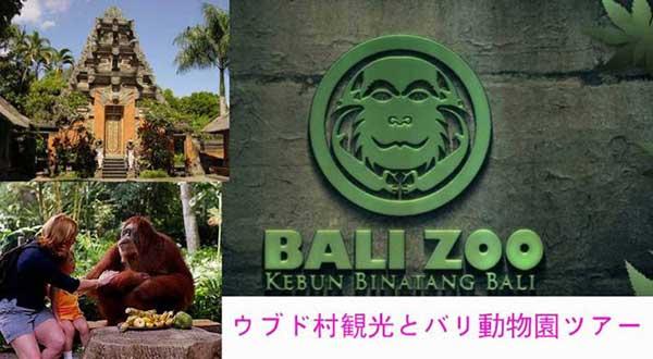 ウブド観光とバリ動動物園に遊ぶ バリ 動物園 ツアー 動物 たち 出会い