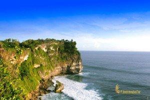 バリ 島 現地発 ツアー 世界 遺産 巡り