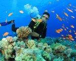 バリ島 の 海で 楽しい マリン スポーツ パッケージ が おススメ