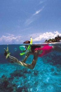 バリ島 での シュノーケリング 海の 美しい 景色 シュノーケル
