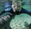 snorkeling06