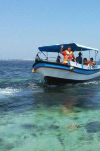 亀 の 島 ツアー バリ タートル アイランド