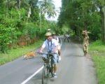 サイクリングアドベンチャー、バリ島サイクリング、Bewishサイクリングツアー