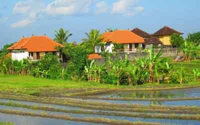 バリ観光の影響, バリ島ニュース,