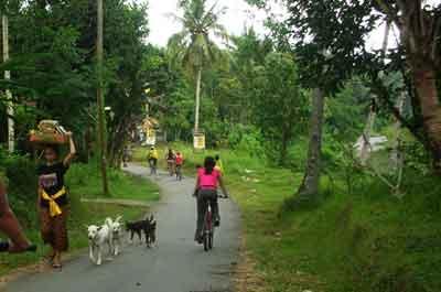 バリ観光地としての100の村. バリビレッジ