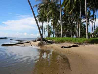バリ島ニュース, バリ島のツアー情報