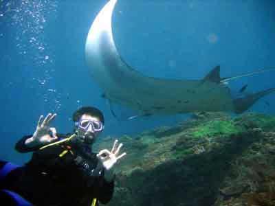 バリダイビング, ヌサペニダ島, ヌサペニダは海洋保全省を取得