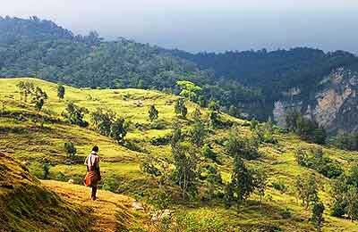 インドネシア東ティモール , 健康